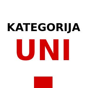 Univerzitetni študij